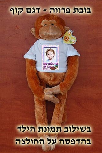 קוף עם הדפס על חולצה