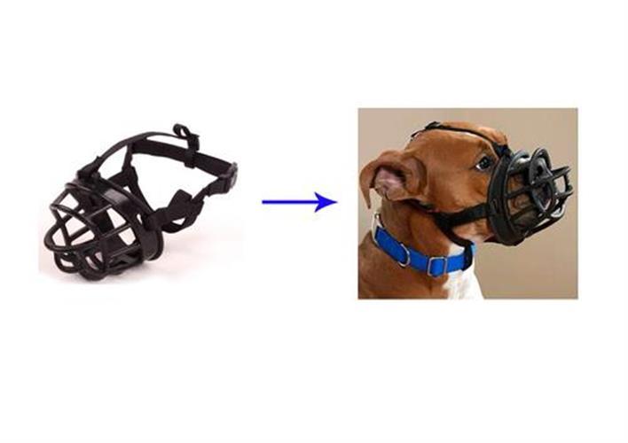 מחסום אילוף בצבע שחור לכלב מס 2 פטקס