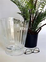 עציץ שרך בכלי זכוכית קוני מעוצב