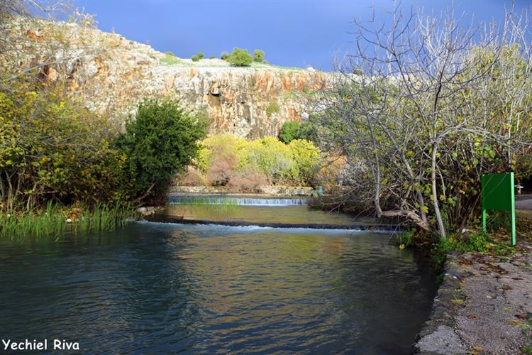 Support Israel and get this picture: Hermon River Spring