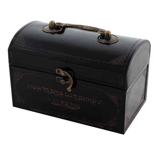 """קופסא לאתרוג דמוי עור עם ידית מתכת 13X19X11 ס""""מ"""