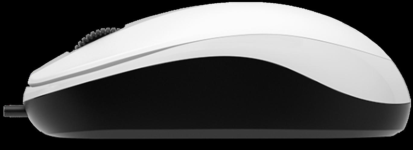 עכבר Genius DX-120 White