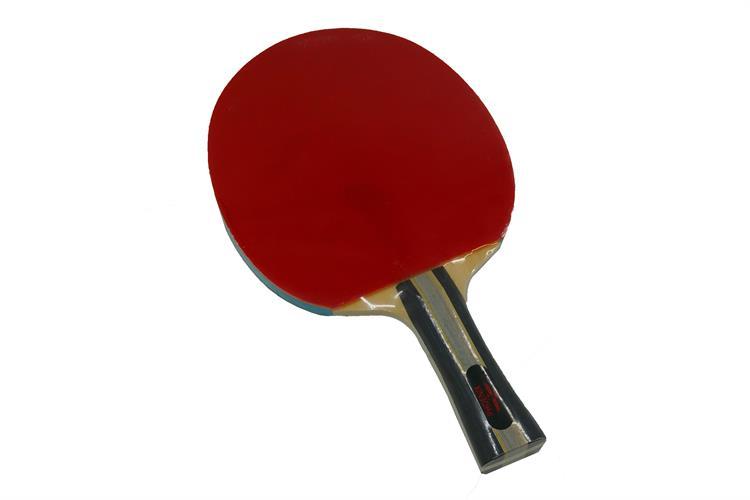 מחבט טניס שולחן מקצועי P3