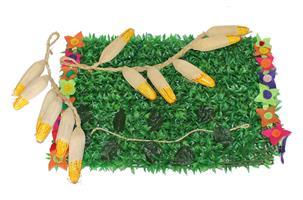 מרבד דשא דקורטיבי עם ירקות