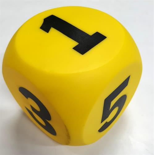 """קוביות מספרים 10 ס""""מ 1-6 גומי איכותי"""