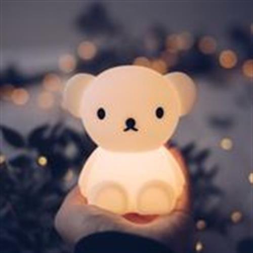 מנורת לילה קטנה בוריס