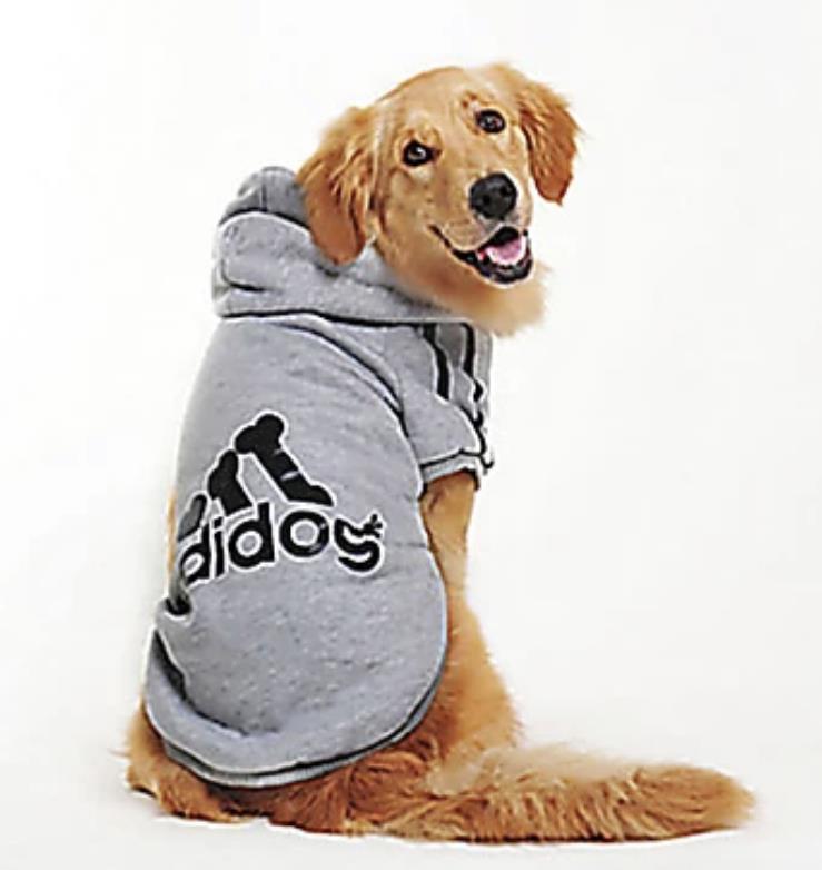 ADIDOG קפוצ׳ון לכלב מידה 6xxL לגזע  בינוני גדול 19-22 קג צבע אפור