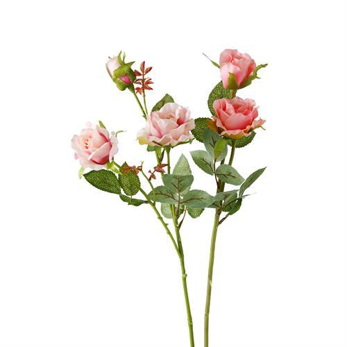 ענף פרחים פיוני