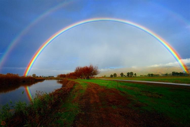 Support Israel and get this picture: Rainbow over Agamon Ha-Hula
