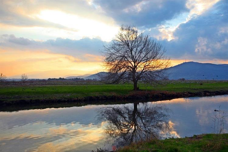 Support Israel and get this picture: Lake Hula