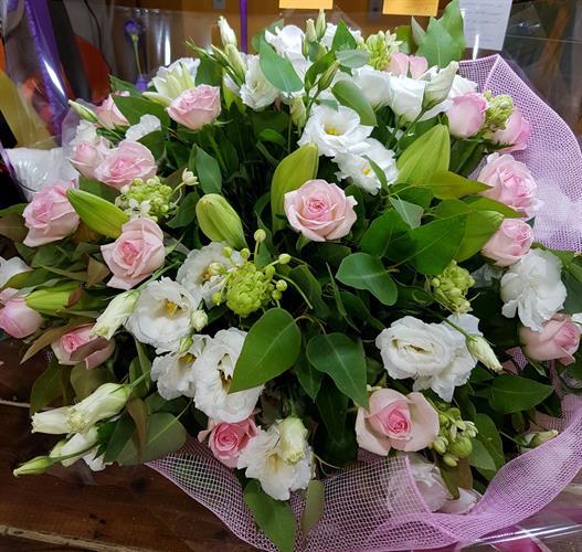ורדים,שושן צחור ,ליזיאנטוס ומקור
