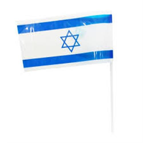 40 דגלוני ישראל פלסטיק