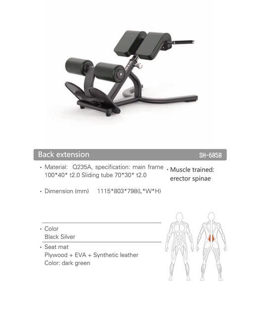זוקפי גב מקצועי  Back Extension