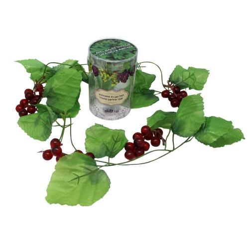 חבל גפן +4 אשכולות ענבים סיליקון בקופסא מהודרת 10