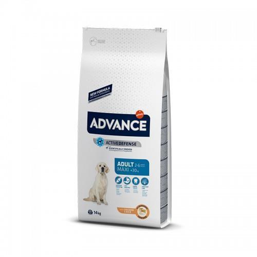 """8410650172620 מזון יבש לכלבים בוגרים מגזע גדול מבוסס עוף ואורז 14 ק""""ג Advance"""