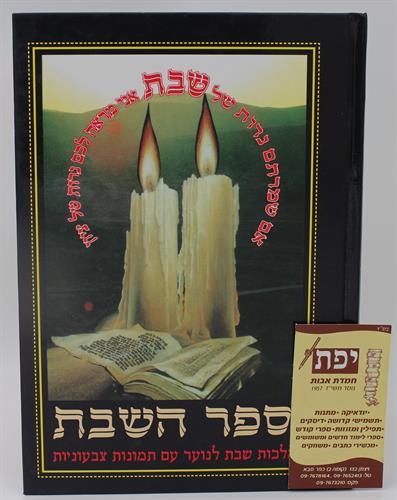 ספר השבת - הרב יחיאל מיכל שטרן